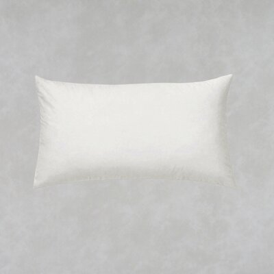 Harkness Vacuum Compressed Filler Pillow Insert Size: 12 x 20
