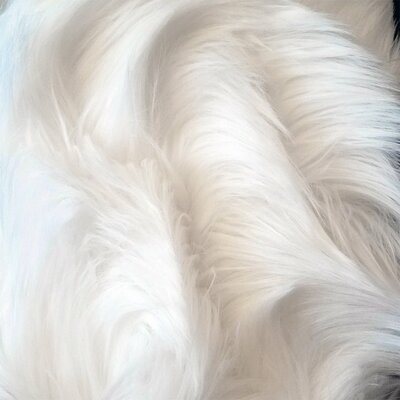 13 Luxurious Kitty The Cloud Cat Perch Color: Brushed