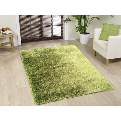 Port Pirie Shag Hand Tufted Green Area Rug Rug Size: Rectangle 5 x 7