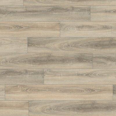 V4 7 x 51 x 8mm Oak Laminate Flooring in Gray