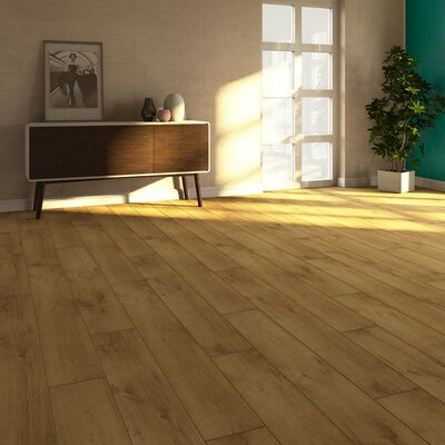 V4 7 x 51 x 8mm Oak Laminate Flooring in Tan
