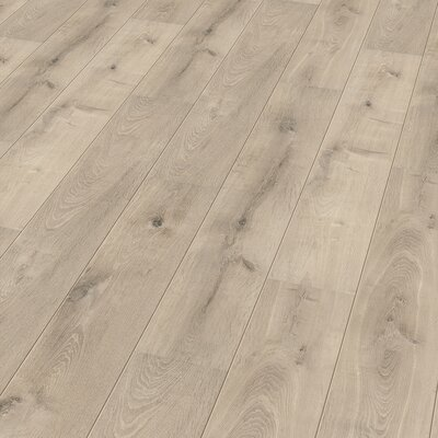 7 x 47 x 8mm Oak Laminate Flooring in Beige