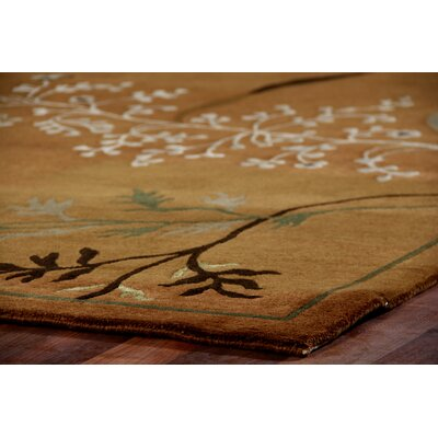 Super Tibetan Hand Knotted Wool/Silk Teracotta Area Rug Rug Size: Rectangle 9 x 10