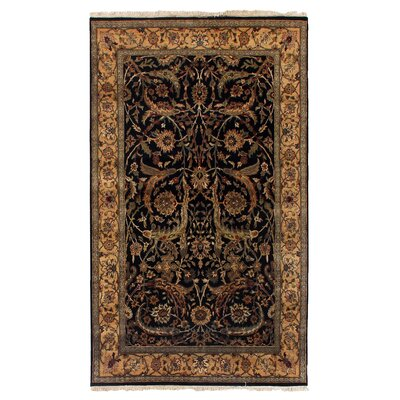 Moghul Hand-Knotted Wool Black/Gold Area Rug Rug Size: Rectangle 6 x 9