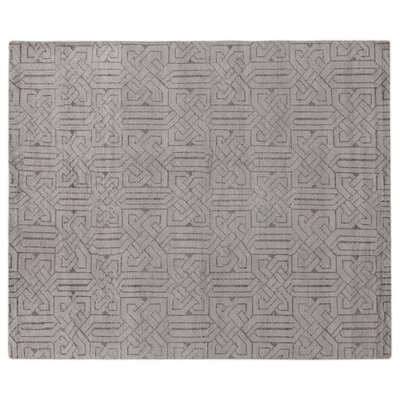 Prague Hand-Woven Silver Area Rug Rug Size: Rectangle 6 x 9
