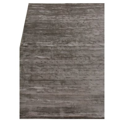 Plain Dove Hand-Knotted Silk Dark Gray Area Rug Rug Size: Rectangle 14 x 18