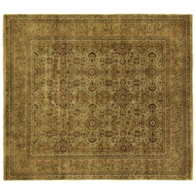 Agra Hand-Knotted Wool Gold/Ivory Area Rug Rug Size: Rectangle 16 x 24