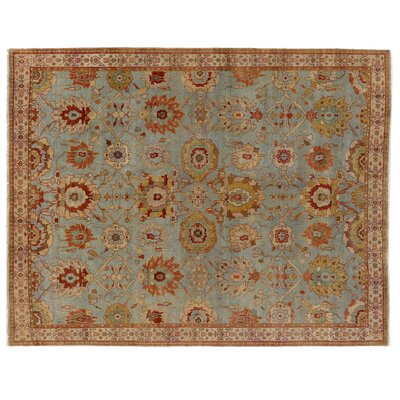 Serapi Hand-Knotted Wool Light Blue/Red Area Rug