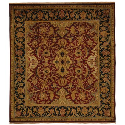 Polonaise Hand Knotted Wool Burgundy/Copper Area Rug Rug Size: Rectangle 9 x 12