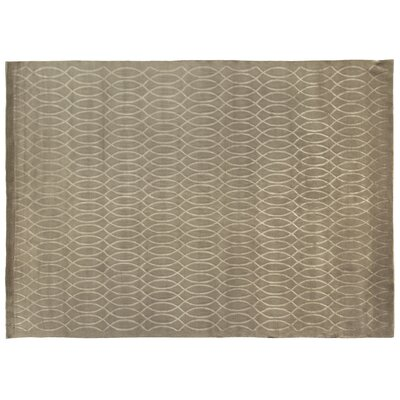 Super Tibetan Hand Knotted Wool/Silk Taupe Area Rug