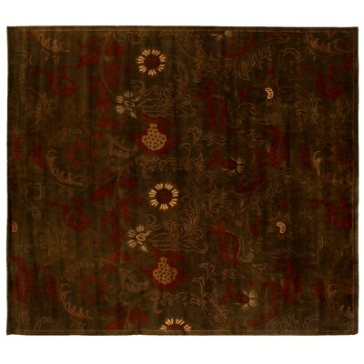 Super Tibetan Hand Knotted Wool/Silk Chocolate Area Rug Rug Size: Rectangle 9 x 10