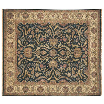 Polonaise Hand Knotted Wool Ivory/Brown Area Rug Rug Size: Rectangle 14 x 18