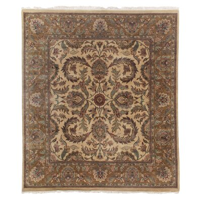 Traditional Hand-Knotted Wool Gold Area Rug Rug Size: Rectangle 9 x 10