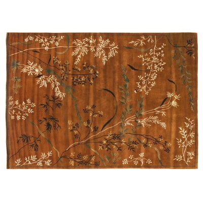Super Tibetan Hand Knotted Wool/Silk Teracotta Area Rug Rug Size: Rectangle 12 x 15