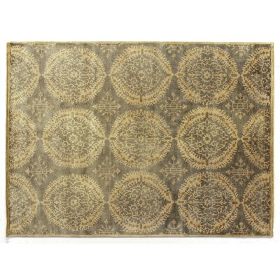 Fine Hand Knotted Wool Silver/Gray Area Rug Rug Size: Rectangle 14 x 18