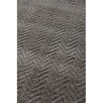 Pavo Hand-Woven Gray Area Rug Rug Size: Rectangle 8 x 10