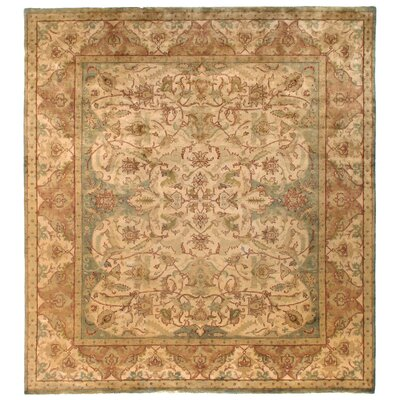 Polonaise Hand Knotted Wool Ivory/Beige Area Rug Rug Size: Rectangle 14 x 18