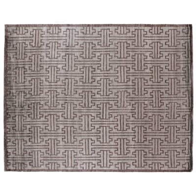 Hand-Knotted Silk Dark Gray Area Rug Rug Size: Rectangle 10 x 14