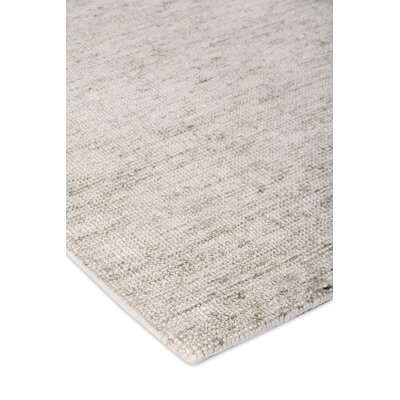 Catalina Hand Woven Beige Area Rug Rug Size: Rectangle 14 x 18