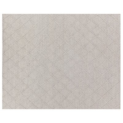 HandWoven Silver/Ivory Area Rug Rug Size: Rectangle�6 x 9