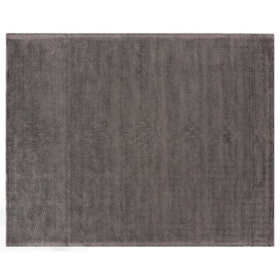 Pavo Hand-Woven Dark Gray Area Rug Rug Size: Rectangle 9 x 12