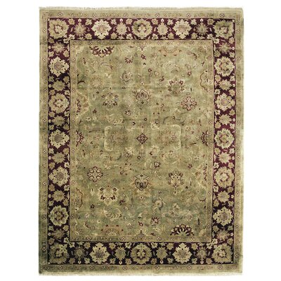 Polonaise Hand Knotted Wool Green/Maroon Area Rug Rug Size: Rectangle 10 x 14