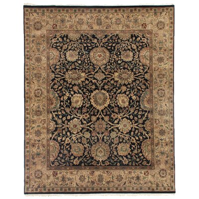 Moghul Hand-Knotted Wool Black/Beige Area Rug Rug Size: Rectangle 9 x 10