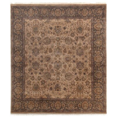 Agra Hand-Knotted Wool Wheat/Brown Area Rug Rug Size: Rectangle 10 x 14