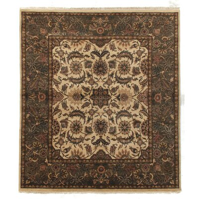 Traditional Hand Woven Wool Ivory/Sage Area Rug Rug Size: Rectangle 10 x 14