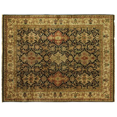 Polonaise Hand-Knotted Wool Black/Green Area Rug Rug Size: Rectangle 14 x 18