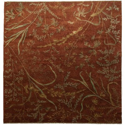 Metropolitan Hand Knotted Wool Teracotta Area Rug