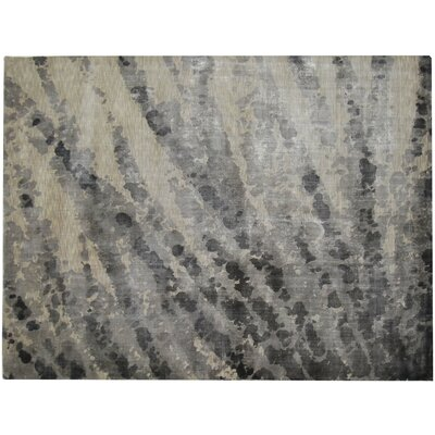 Koda Silk Gray Area Rug Rug Size: Rectangle 9 x 12