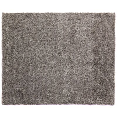 Shaggy Handmade Shag Wool Ivory Area Rug Rug Size: Rectangle 5 x 8