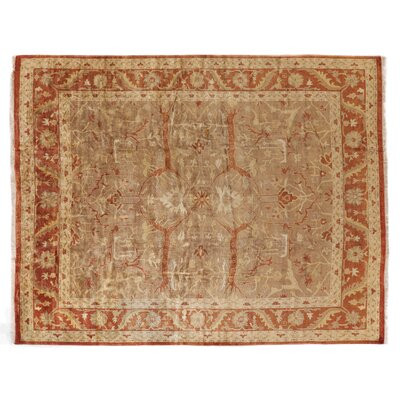 Anatolian Oushak Hand-Knotted Wool Brown/Rust Area Rug
