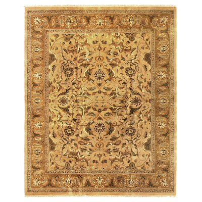 Polonaise Hand Knotted Wool Yellow/Gold Area Rug Rug Size: Rectangle 12 x 15