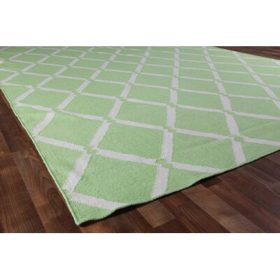 Hand-Woven Wool Mint Area Rug