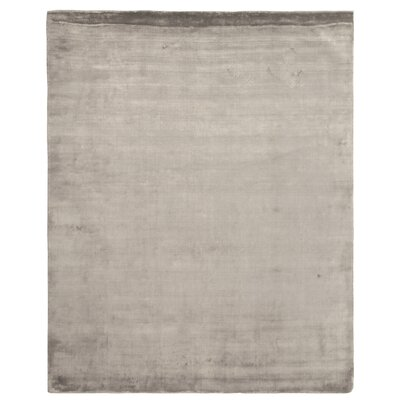 Softest Touch Silver Area Rug Rug Size: 4 x 6