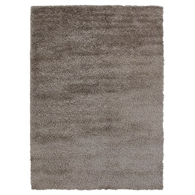 Hand-Woven Silver Area Rug Rug Size: Rectangle 5 x 8