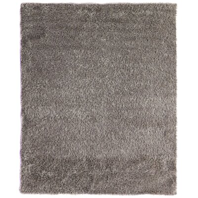 Hand-Woven Ivory Area Rug Rug Size: Rectangle 8 x 10