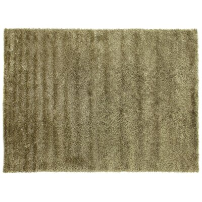 Hand-Woven Beige Area Rug Rug Size: Rectangle 10 x 14