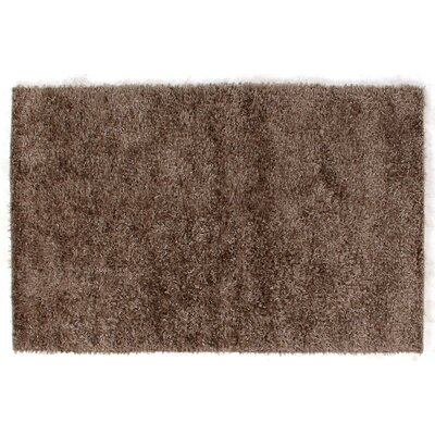 Hand-Woven Chocolate Area Rug Rug Size: Rectangle 10 x 14