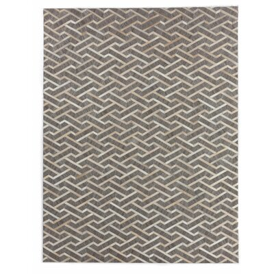 Beige/Silver Area Rug Rug Size: Rectangle 8 x 11