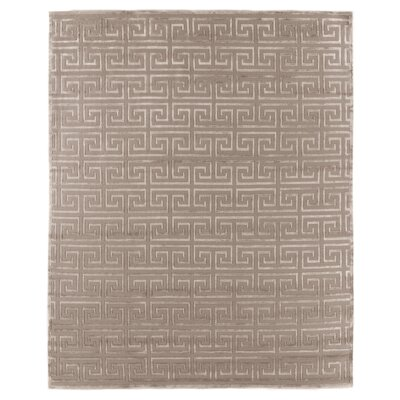 Hand-Knotted Wool Beige Area Rug Rug Size: Rectangle 6 x 9
