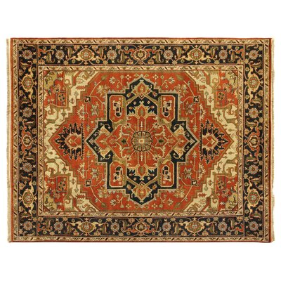 Serapi, New Zealand Wool, Rust/Black (8x10) Area Rug Rug Size: 4 x 6