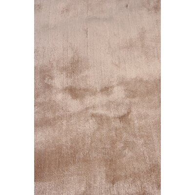 Hand Woven Silk Light Beige Area Rug Rug Size: Rectangle 9 x 12