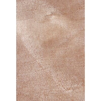 Hand Woven Silk Light Beige Area Rug Rug Size: Rectangle 6 x 9