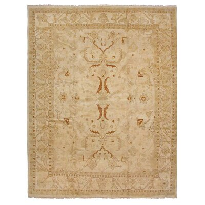 Traditional Hand Women Wool Ivory Area Rug