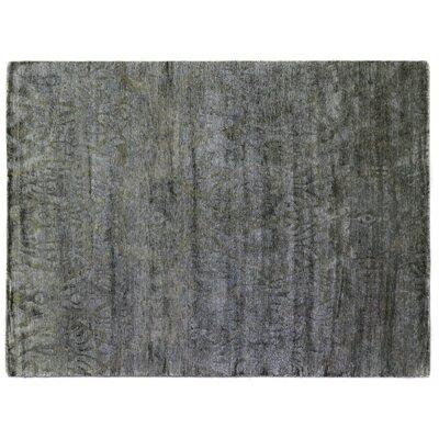 Hand Woven Silk Aqua Area Rug Rug Size: Rectangle 8 x 10