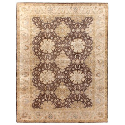 Hand Woven Wool Brown/Beige Area Rug Rug Size: Rectangle 10 x 14