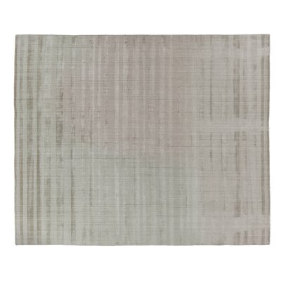 Robin Hand-Woven Beige Area Rug Rug Size: Rectangle 14 x 18